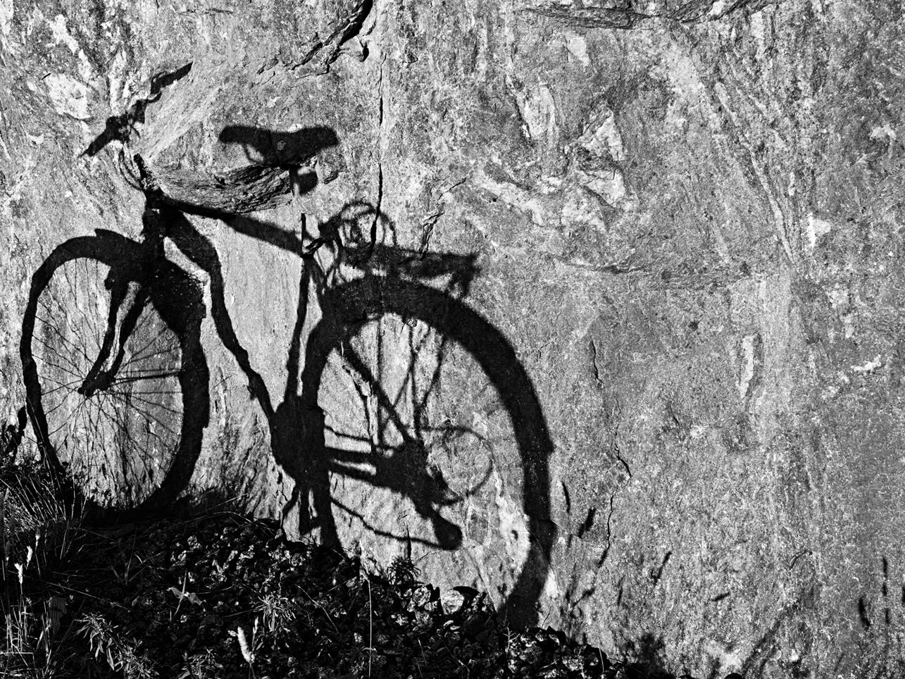 Foto: Leif Ljungquist. Cykelskugga.