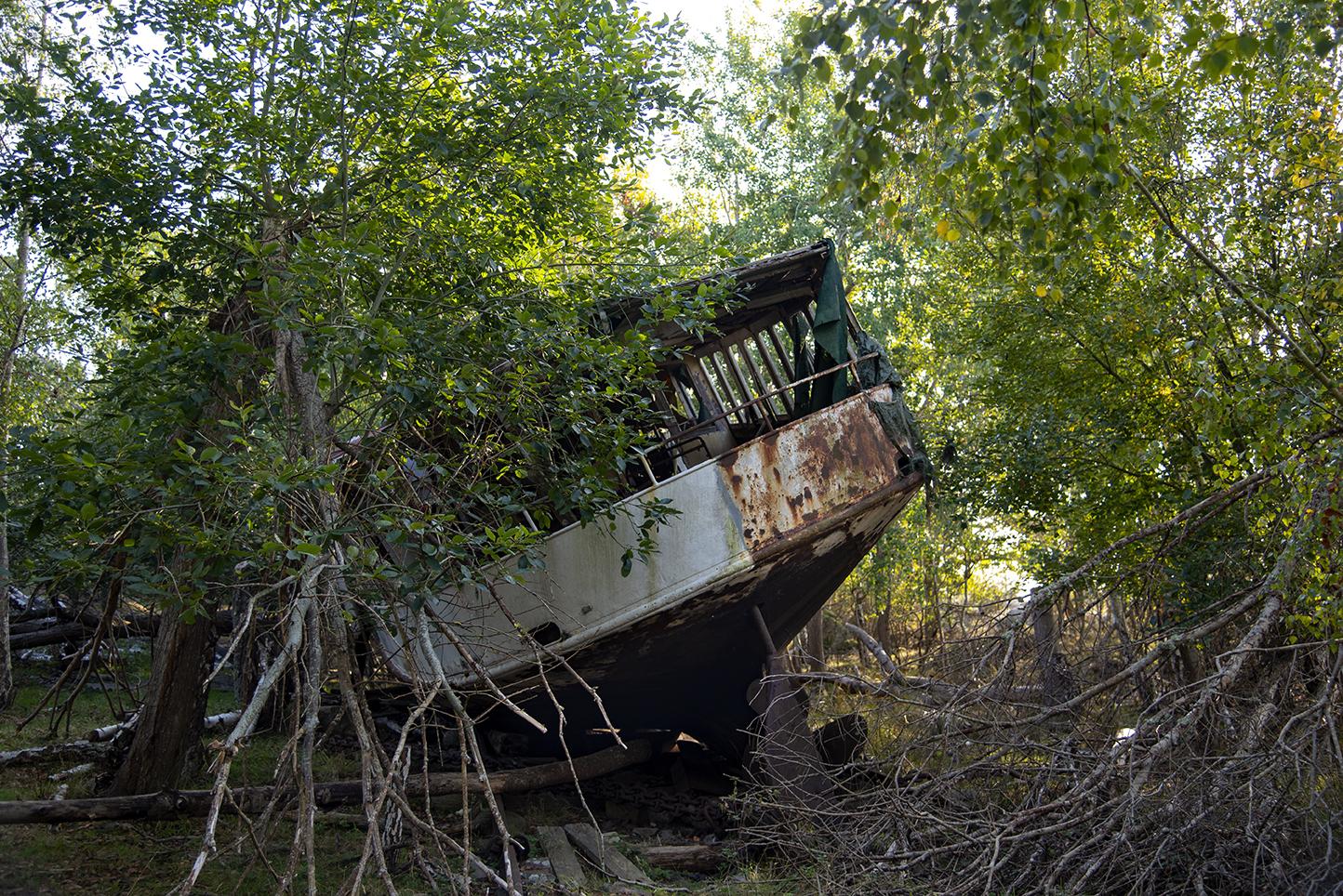 Båtvrak i en skogsglänta.